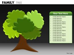 Family Tree ppt 20