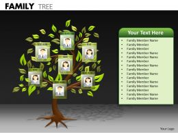 Family Tree ppt 21