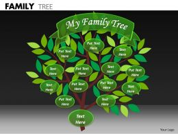 Family Tree ppt 22