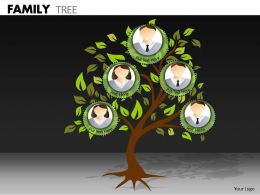 Family Tree ppt 23