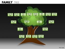 Family Tree ppt 3