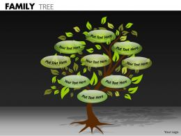 Family Tree ppt 4