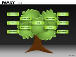 Family Tree ppt 5