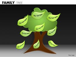 Family Tree ppt 6