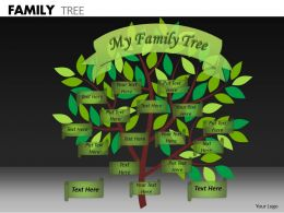 Family Tree ppt 8