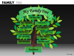 Family Tree ppt 9