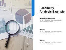 Feasibility Analysis Example Ppt Powerpoint Presentation Example Cpb