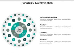 Feasibility Determination Ppt Powerpoint Presentation Layouts Professional Cpb