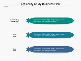 Feasibility Study Business Plan Ppt Powerpoint Presentation Gallery Slide Download Cpb