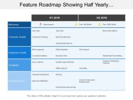 Feature Roadmap Showing Half Yearly Conversion Tracking Timeline