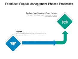Feedback Project Management Phases Processes Ppt Powerpoint Presentation Inspiration Backgrounds Cpb