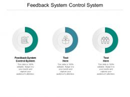 Feedback System Control System Ppt Powerpoint Presentation Gallery Cpb
