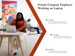 Female Company Employee Working On Laptop
