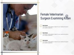 Female Veterinarian Surgeon Examining Kitten