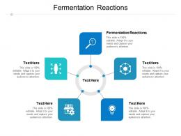 Fermentation Reactions Ppt Powerpoint Presentation Infographic Template Show Cpb