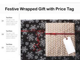 Festive Wrapped Gift With Price Tag