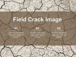 Field Crack Image