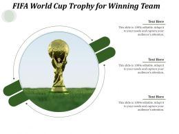 FIFA World Cup Trophy For Winning Team