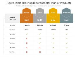 Figure Table Showing Different Sales Plan Of Products