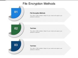 File Encryption Methods Ppt Powerpoint Presentation Model Slide Portrait Cpb