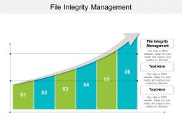 File Integrity Management Ppt Powerpoint Presentation Ideas Good Cpb