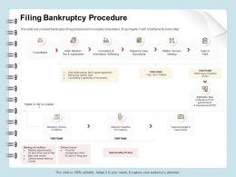 Filing Bankruptcy Procedure Consultation Ppt File Slides