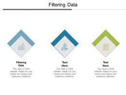 Filtering Data Ppt Powerpoint Presentation Infographic Template Microsoft Cpb