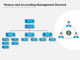 Finance And Accounting Management Structure
