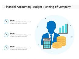 Financial Accounting Budget Planning Of Company
