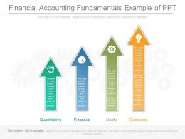 Financial Accounting Fundamentals Example Of Ppt