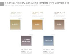 Financial Advisory Consulting Template Ppt Example File