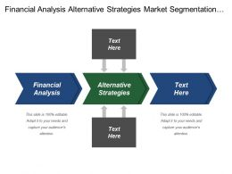 Financial Analysis Alternative Strategies Market Segmentation Brand Strategy