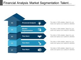Financial Analysis Market Segmentation Talent Management Performance Management Cpb