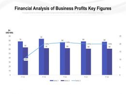 Financial Analysis Of Business Profits Key Figures