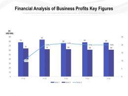 Financial Analysis Of Business Profits Key Figures