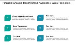 Financial Analysis Report Brand Awareness Sales Promotion Campaigns