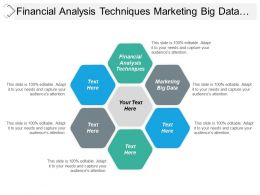 Financial Analysis Techniques Marketing Big Data Business Environment Cpb