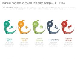 Financial Assistance Model Template Sample Ppt Files