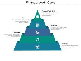 Financial Audit Cycle Ppt Powerpoint Presentation Model Structure Cpb