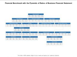Financial Benchmark With The Pyramids Of Ratios Of Business Financial Statement