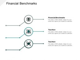 Financial Benchmarks Ppt Powerpoint Presentation Infographic Template Template Cpb