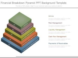 Financial Breakdown Pyramid Ppt Background Template