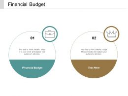 Financial Budget Ppt Powerpoint Presentation File Elements Cpb