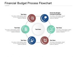 Financial Budget Process Flowchart Ppt Powerpoint Presentation Slide Cpb