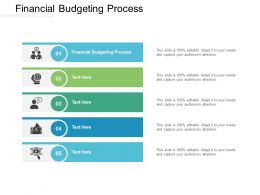 Financial Budgeting Process Ppt Powerpoint Presentation Diagram Lists Cpb
