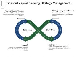 Financial Capital Planning Strategy Management Process Strategic Issues