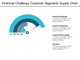 Financial Challenge Customer Segments Supply Chain Strategy Competency Evaluation Cpb