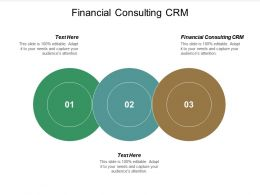 Financial Consulting CRM Ppt Powerpoint Presentation File Shapes Cpb