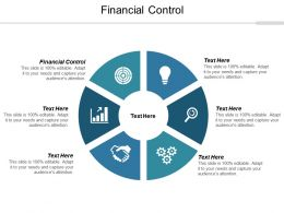 Financial Control Ppt Powerpoint Presentation Outline Graphics Example Cpb