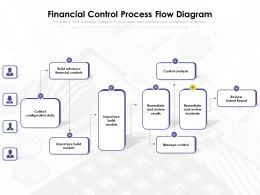 Financial Control Process Flow Diagram